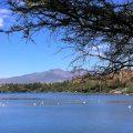 Lake_Bishoftu